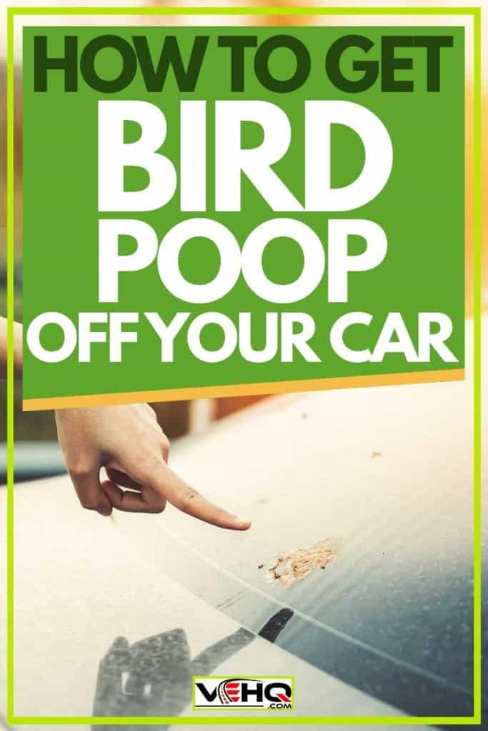 How To Get Bird Poop Off Your Car