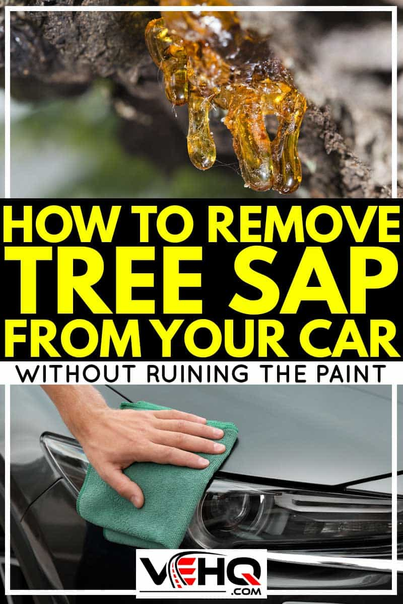 Tree Sap Remover >> How To Remove Tree Sap From Your Car (Without Ruining The ...