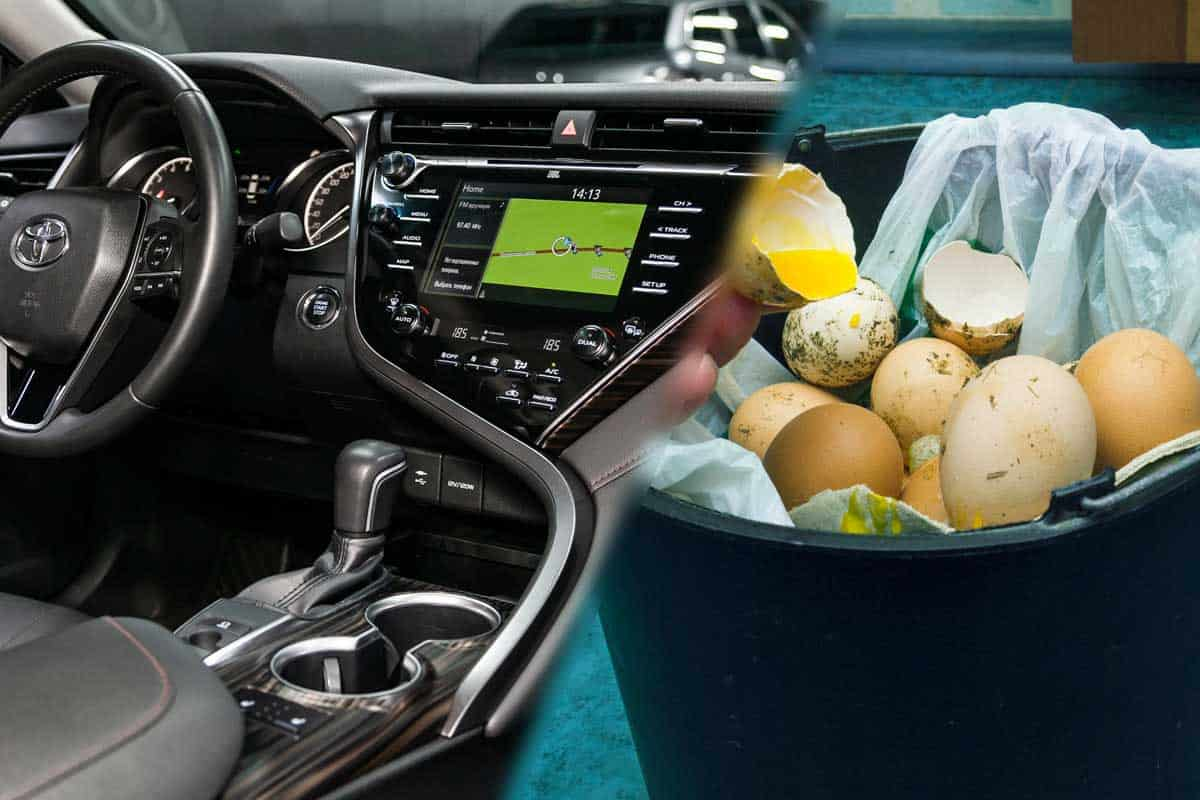 A collage of a car interior and an rotten smelly egg in a trashcan, Why Does My Car Smell Like Eggs?