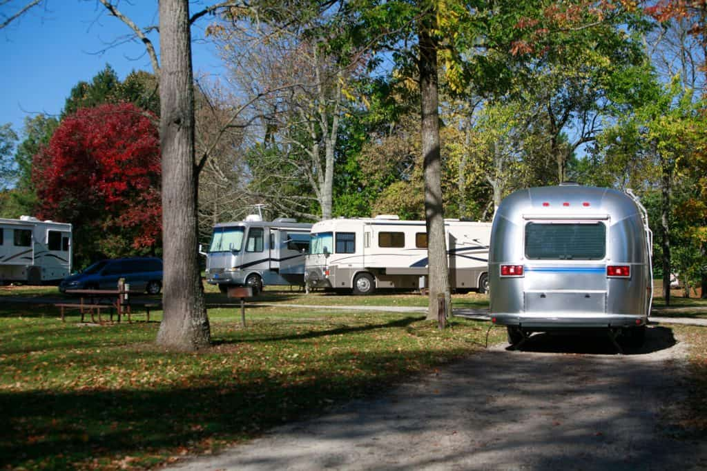 A camping ground filled with motorhomes parked near trees