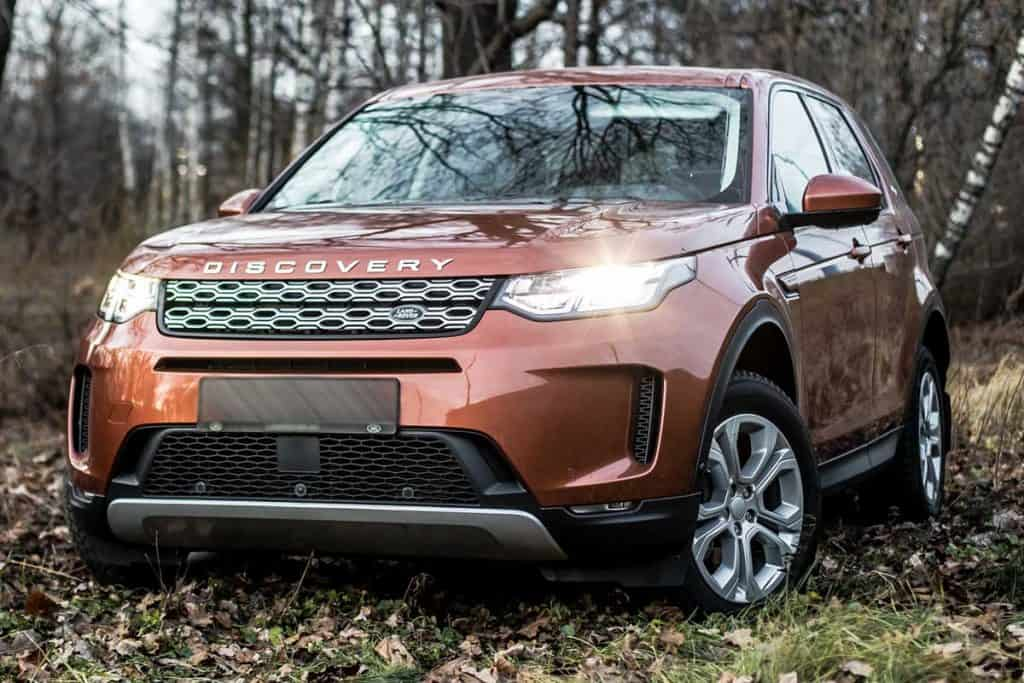 Land Rover Discovery sport parked in the gray forest, What Are The Tallest SUVs? [6 Models That Fit The Bill]