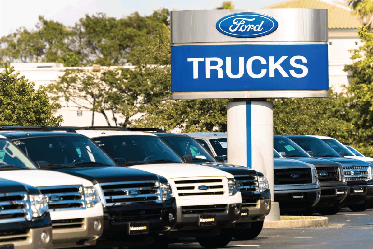 Ford trucks at a car dealership.