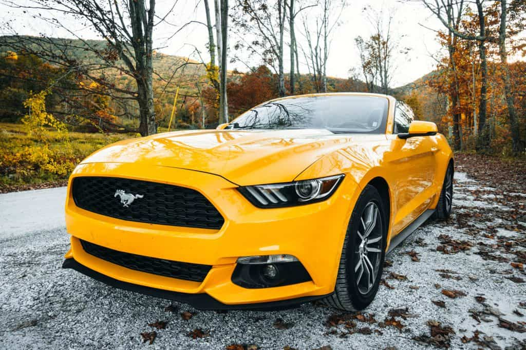 A yellow colored Ford Mustang GT parked in the woods, Does A Ford Mustang Ecoboost Have Turbo?