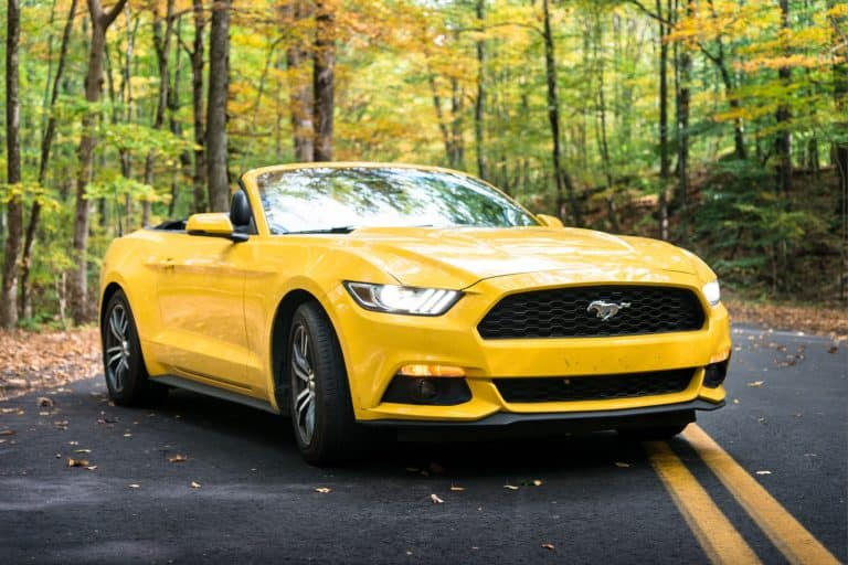 View of a yellow Ford Mustang GT convertible 2016 version parked on the middle of the road of the Nehantic State Forest in Conncticut, How Much Does A Ford Mustang Weigh?