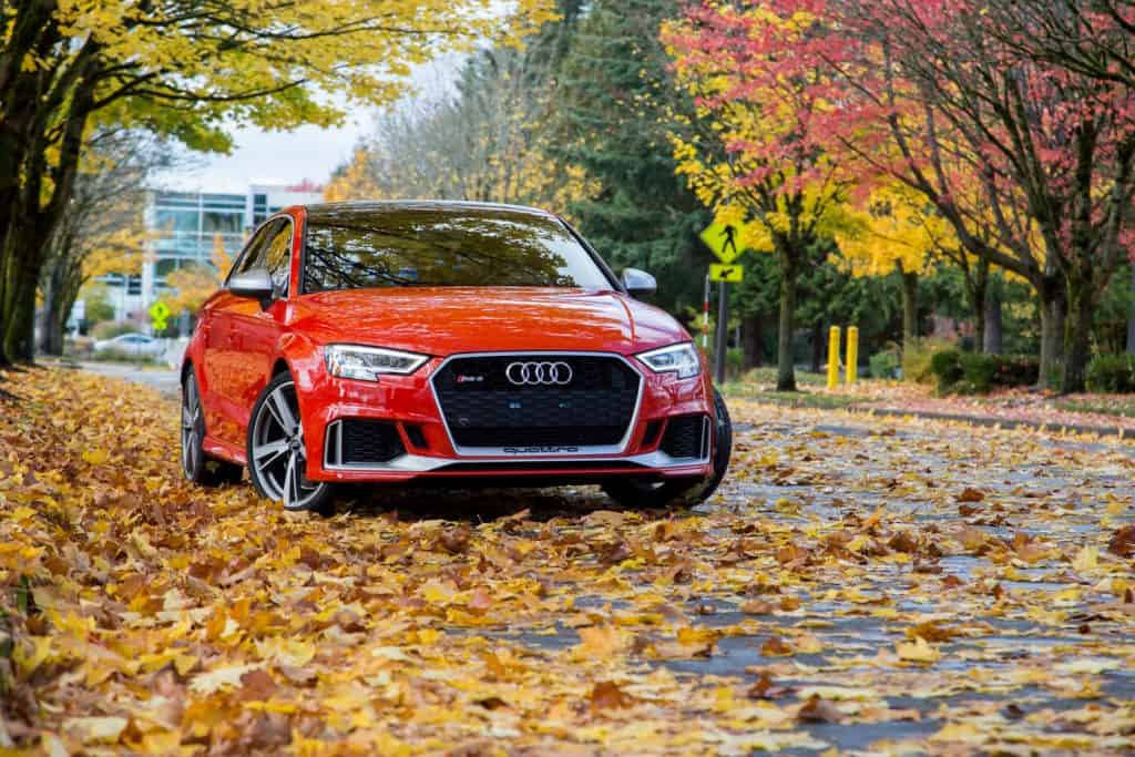 An Audi RS3 on fallen leaves
