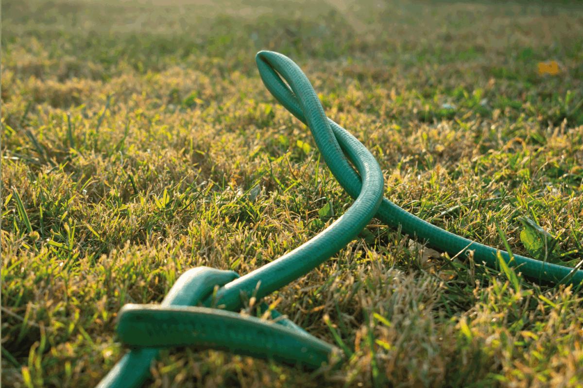 A green kinked garden hose