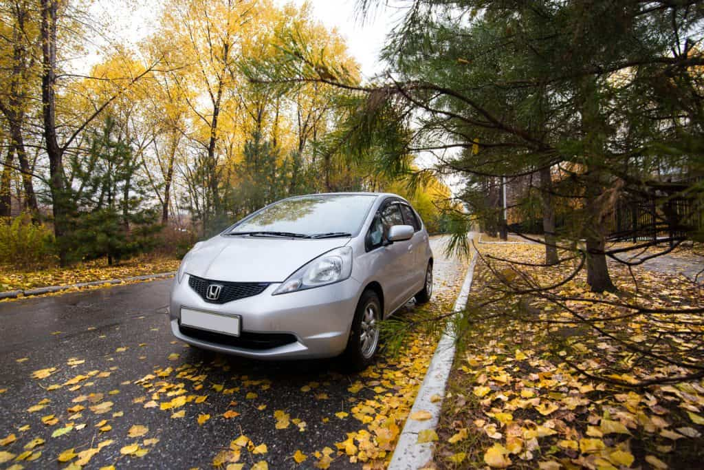 Honda Fit or Jazz on autumn road in a rainy day in evening.