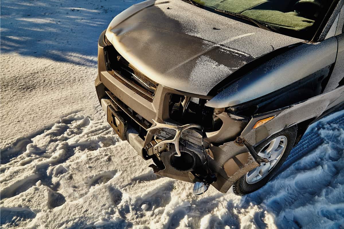 crashed car with deer antler stuck in fender